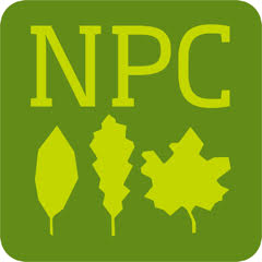 Nyack Park Conservancy