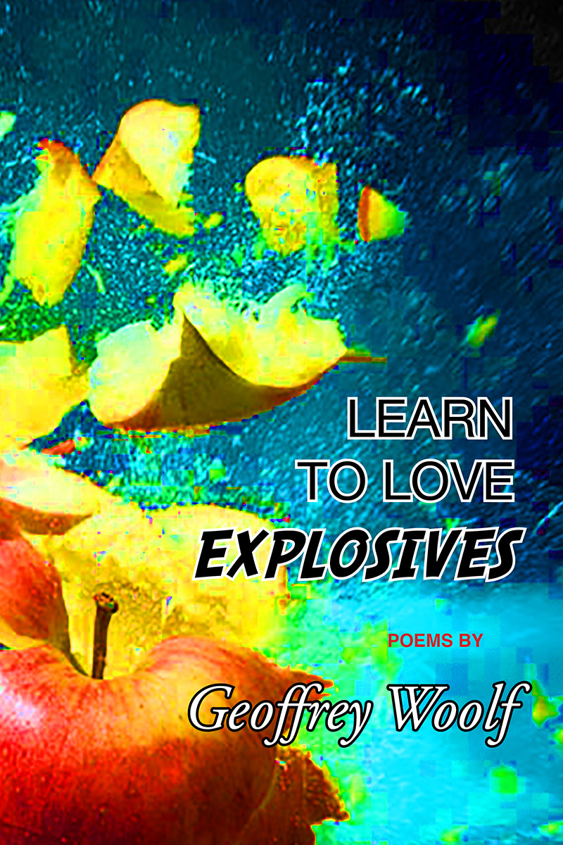 learn-to-love-explosives-cover.jpg