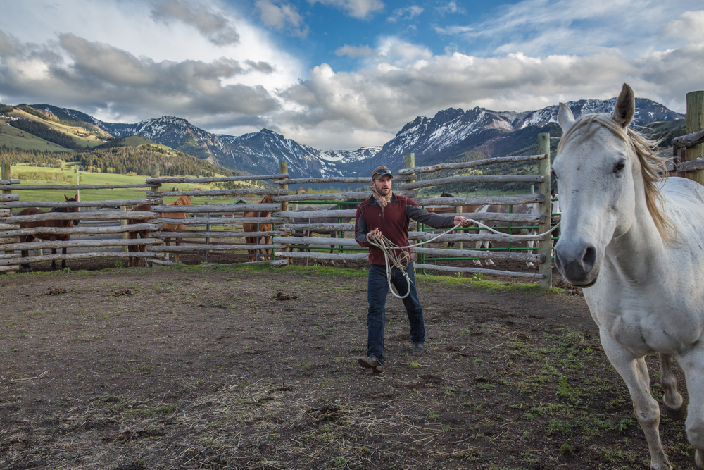 A relationship with a horse is an integral part of a range rider's job. A good horse becomes a rider's partner, whose sensitivity and intuition contributes immensely to any experience and encounters on the landscape. Daniel Anderson works his horse in the round pen before an evening ride.