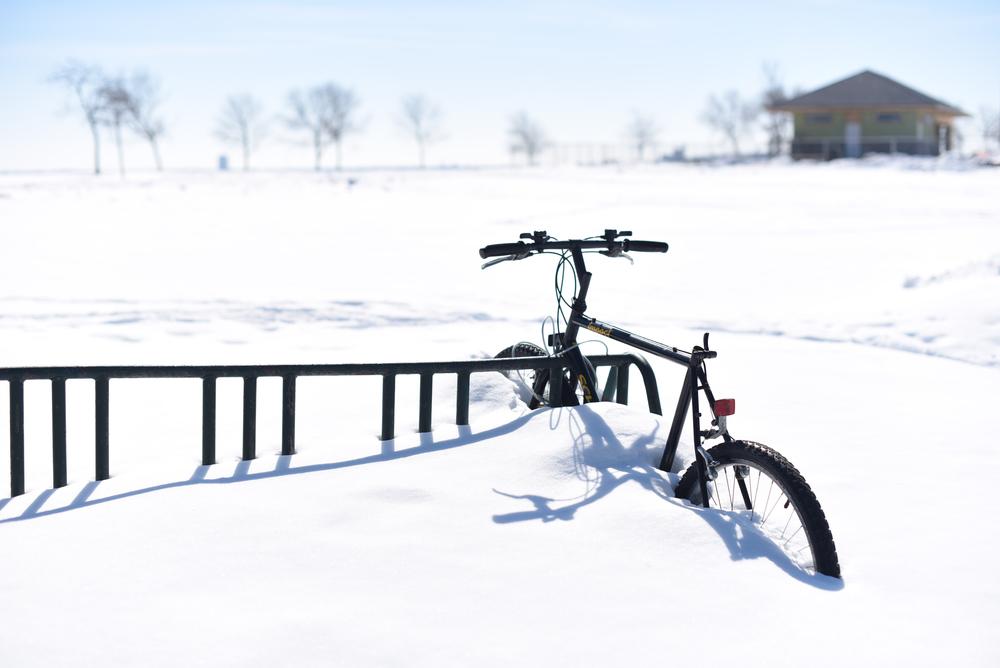 Winter 2015_3.jpg