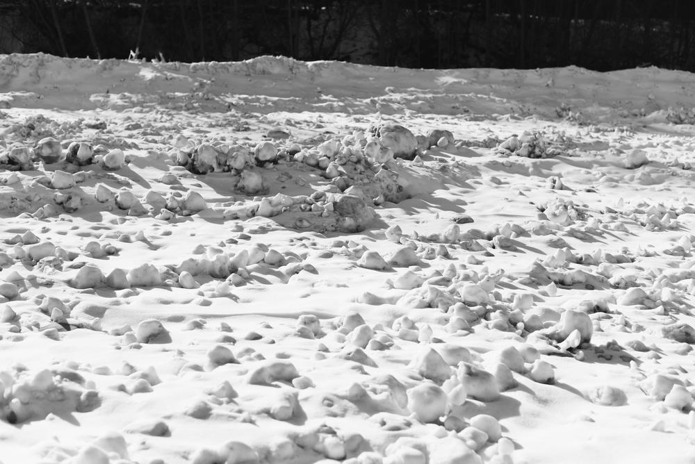 Winter 2015_4.jpg