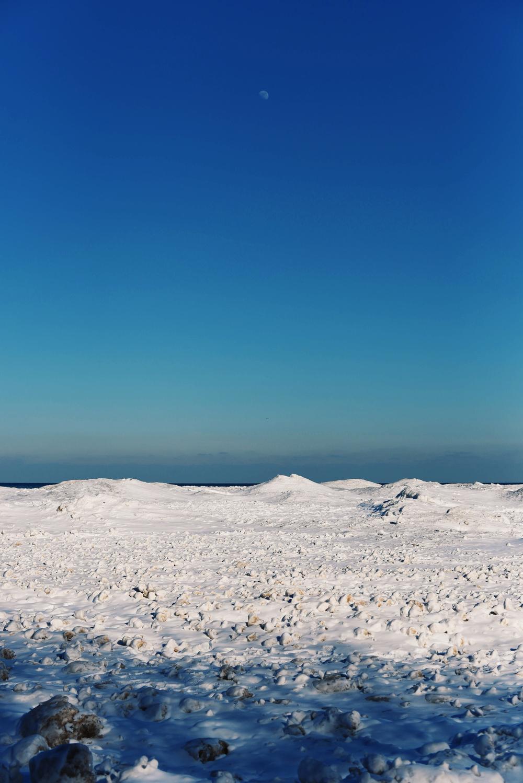 Winter 2015_5.jpg