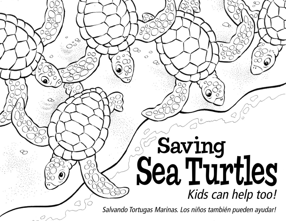 Saving Sea Turtles Activity Book