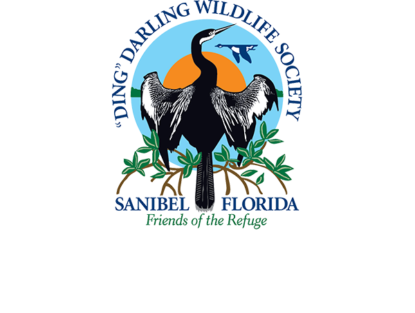 "The ""Ding"" Darling Wildlife Society"