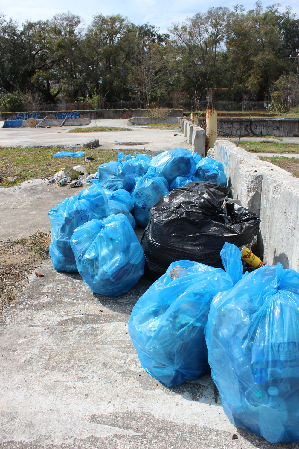 kooktown cleanup 018.jpg