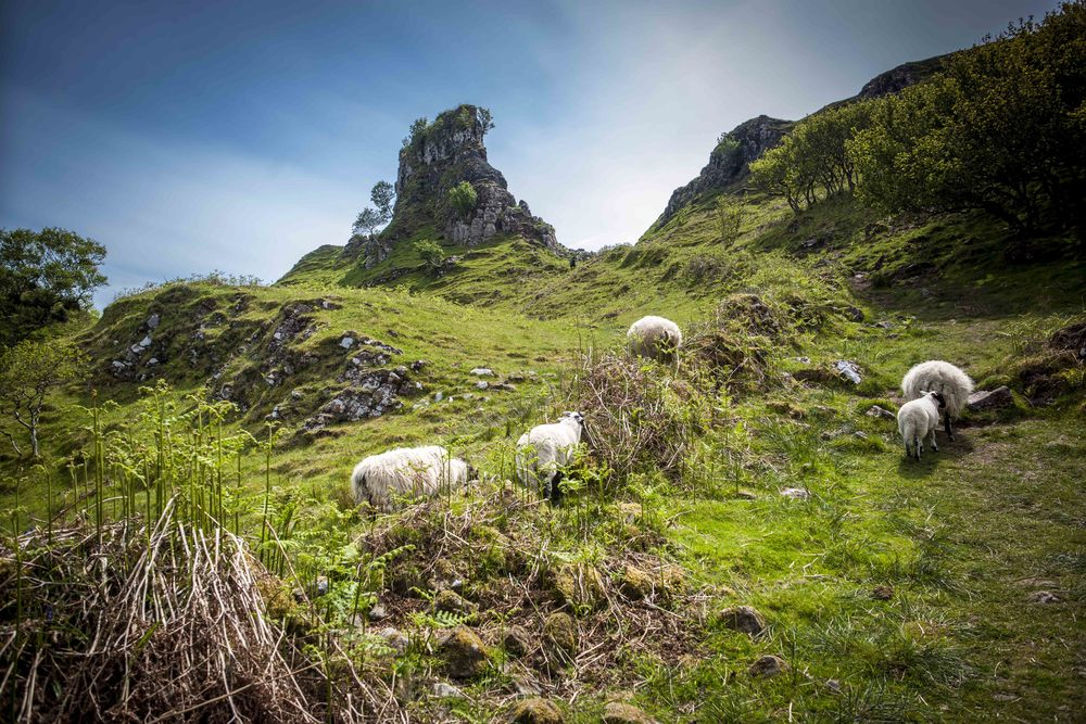 Fairy Glen, Uig. Photo by Inga