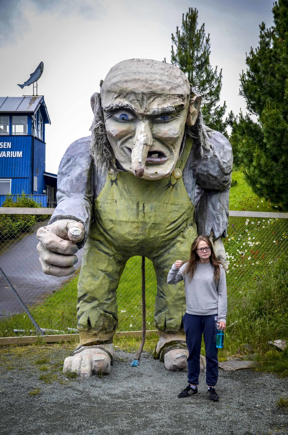 If you chose to continue on the E6 road instead of taking the coastal road, you can stop by the Namsen salmon aquarium and take your picture with a huge troll, like we did last year.