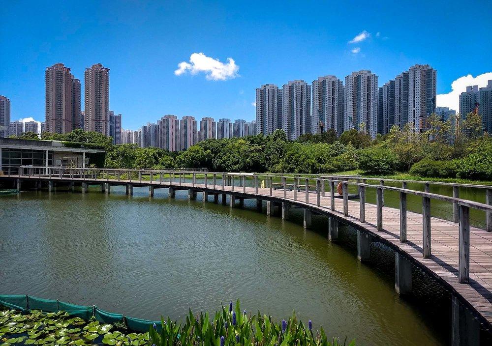 Wetland Park, Tin Shui Wai