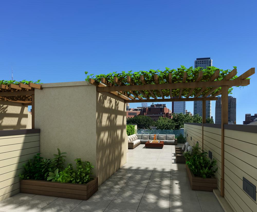 Roof Deck rendering, 734-738 Bainbridge.jpg