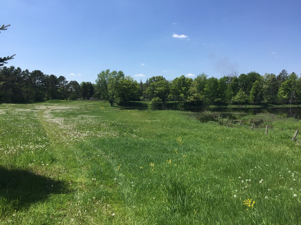 Sold - Hugo - 38 acres