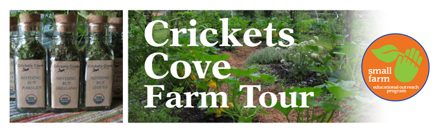 Organic Farming Workshop at Crickets Cove Farm