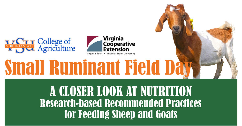 "Small Ruminant Field Day  OCTOBER 20, 2017 9:00am - 3:00pm  VSU RANDOLPH FARM 4415 River Road • Petersburg, VA  REGISTER ONLINE:  https://goo.gl/forms/jinkAbQqZvImvjYw2   Join us for the Small Ruminant Field Day on Friday, October 20, beginning at 8:00am to learn more about the research-based practices for small ruminant nutrition.  Cost is $10 per person, payable by cash or check on the day of the event. Please make your checks payable to ""Virginia State University.""  If you are a person with a disability and desire any assistive devices, services or other accommodations to participate in this activity, please contact the Small Ruminant Program office at (804) 524-5960 / TDD (800) 828-1120 during business hours of 8 am. and 5 p.m. to discuss accommodations five days prior to the event."