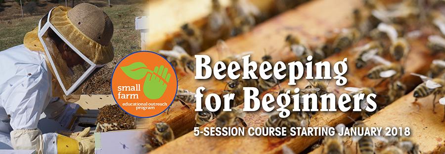 Beekeeping_banner.jpg