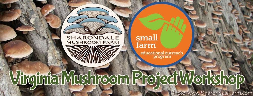 Virginia-Mushroom-Project-Workshop_hires.jpg