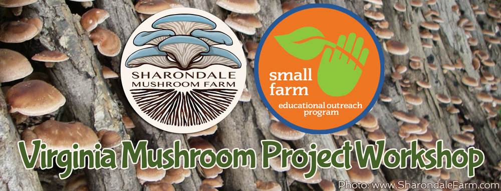 Virginia-Mushroom-Project-Workshop_hires.jpg