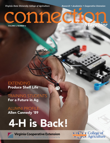 Connection Magazine, Volume 3, Number 2