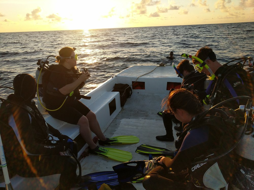 Early Morning Dive Group