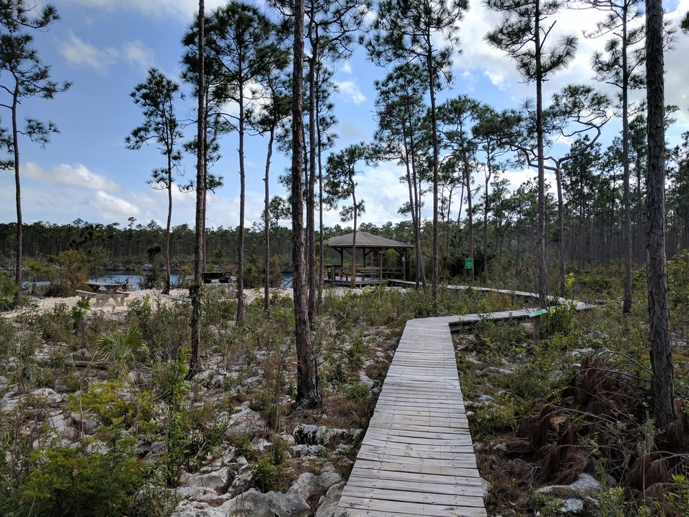 Boardwalk to the Pavilion and Blue Hole