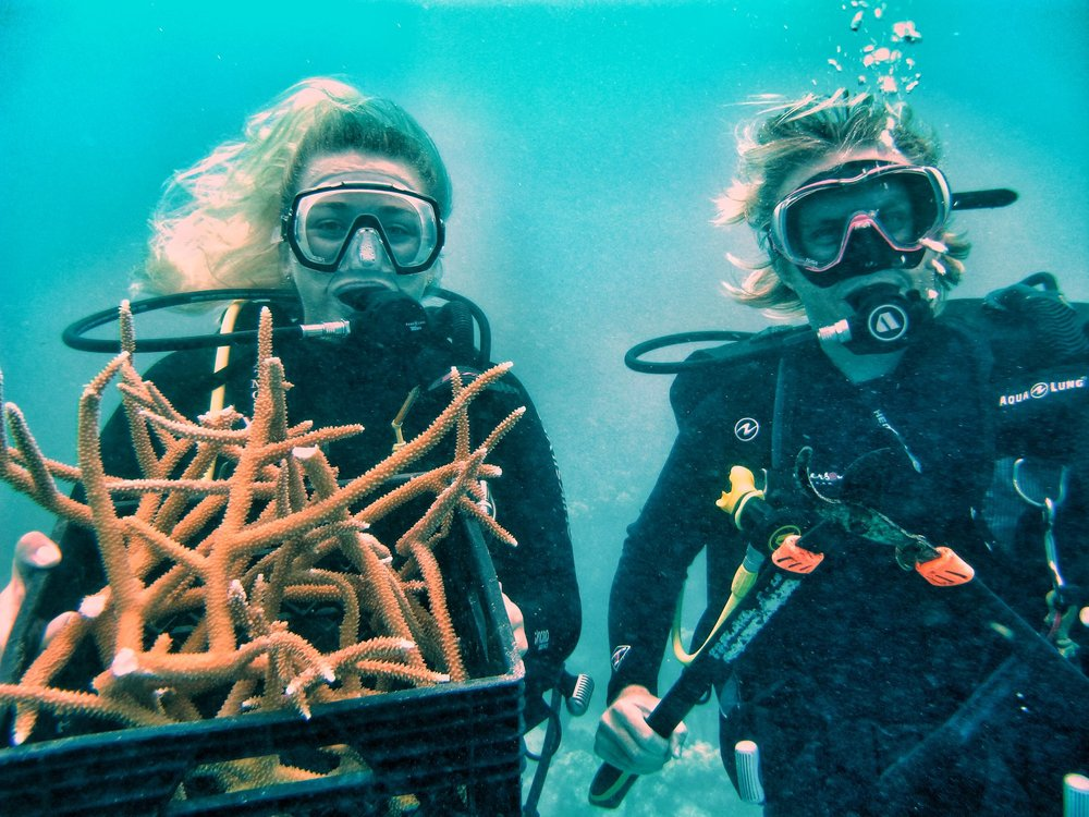 Trinitt Mike coral basket - reef rescue.jpg