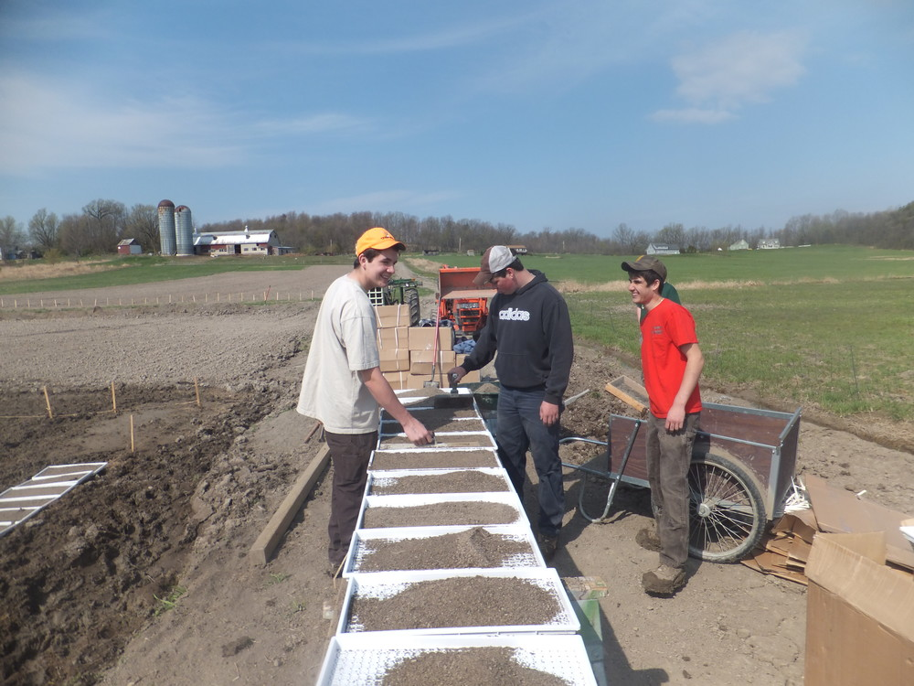 A work party fills transplant trays with soil and compost, April 2012