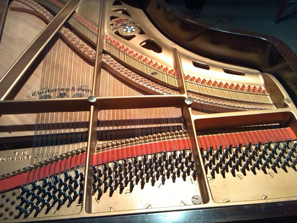 Floyd Gadd | Piano Technician