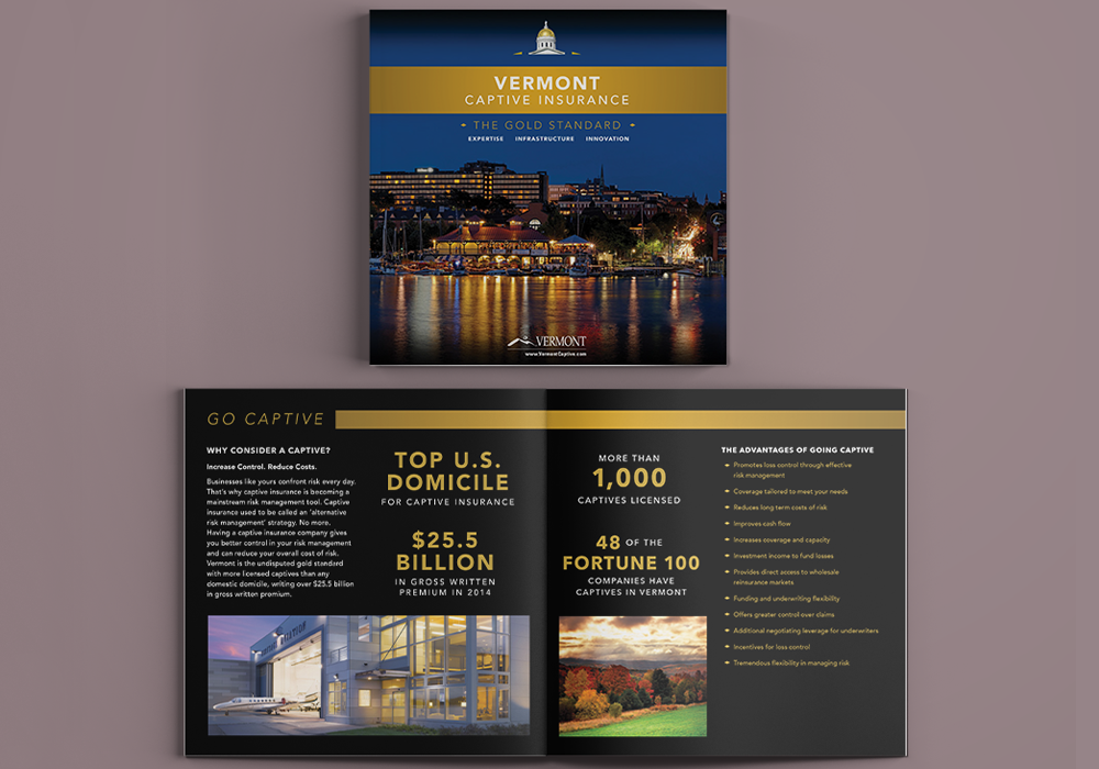 Vermont Captive Insurance Brochure Design