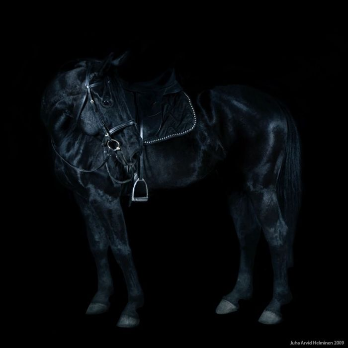 Juha Arvid Helminen, Black on Black Photography, Dark Photography, Low Light Photography, The Invisible Empire