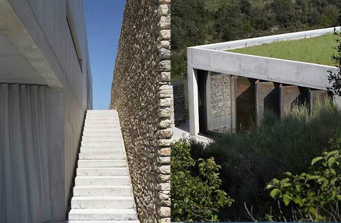 G House, Studio Ko, Modern, Minimal, Home, Grass Roof