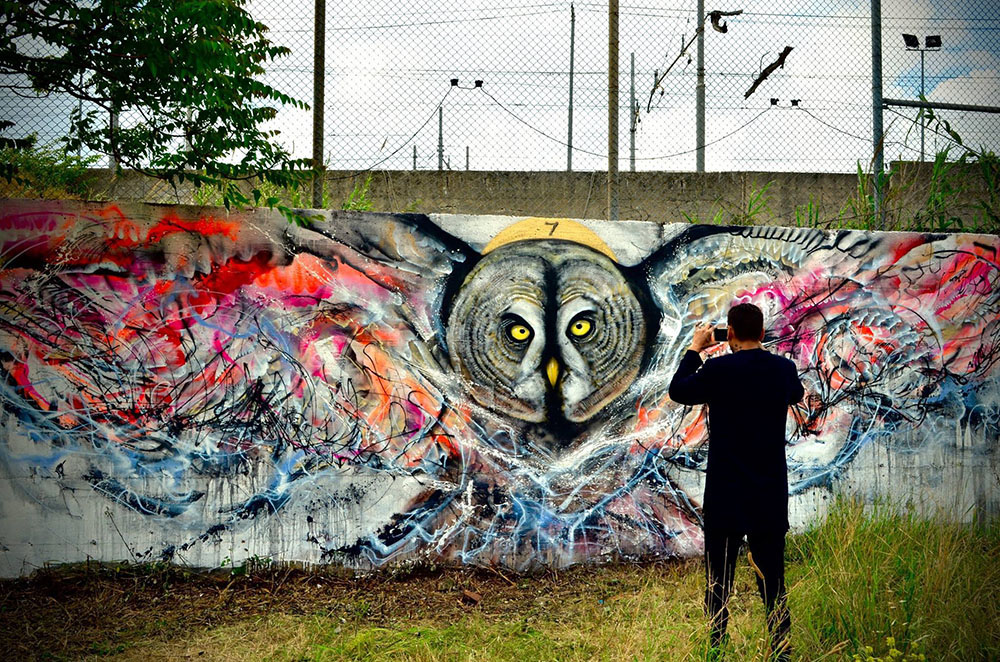 L7M, STREET ART, Graffiti Birds, owl