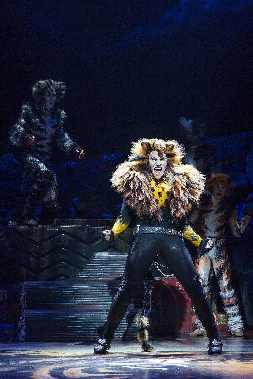 Tyler Hanes as Rum Tum Tugger in CATS on Broadway Photo by Matthew Murphy.jpg