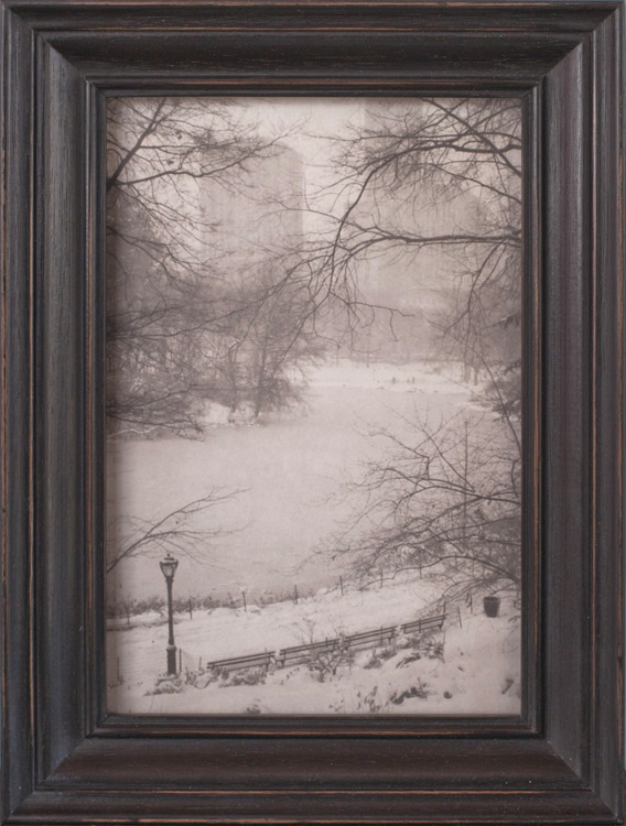 Frozen Pond, Central Park         Platinum print, artist made frame
