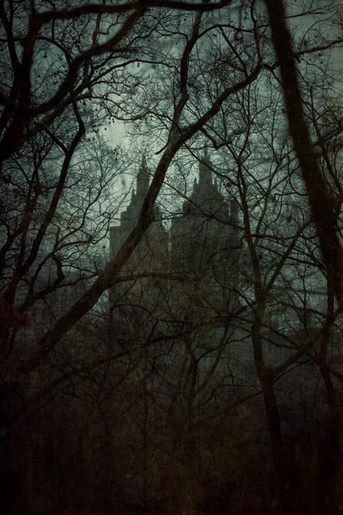 Central Park Nocturne ( San Remo )      Pigment print