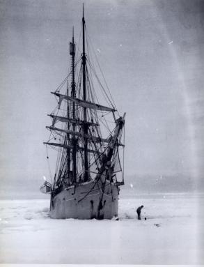 Buzula sıkışmış Belgica - 1898