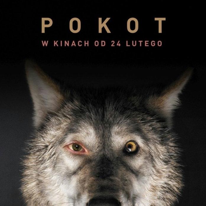 İz – Pokot - Spoor