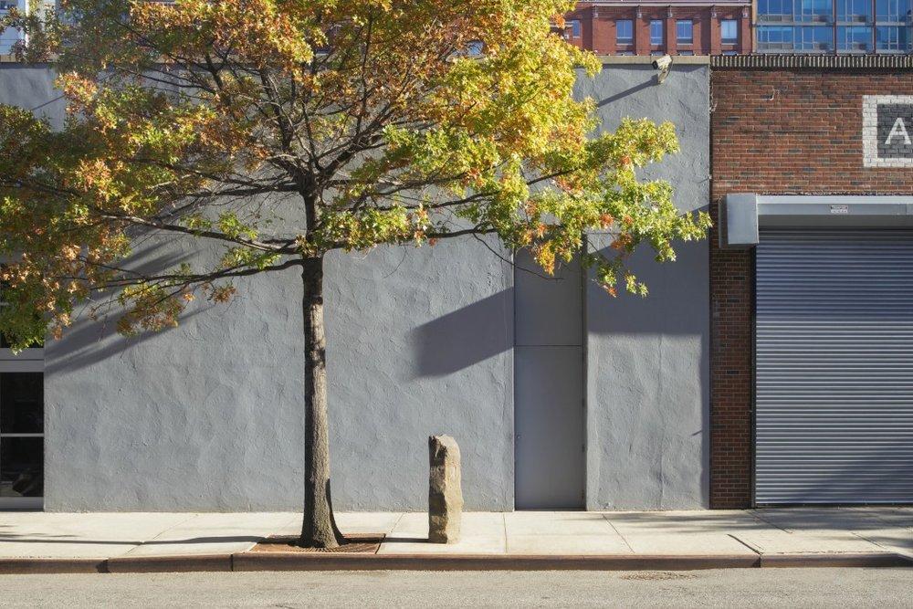 Joseph Beuys - 7000 Meşe (1982-1987)