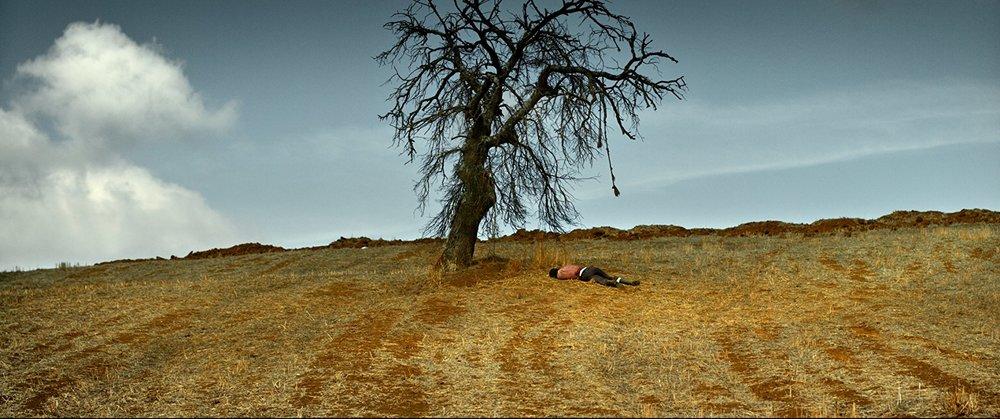 ahlat ağacı.jpg
