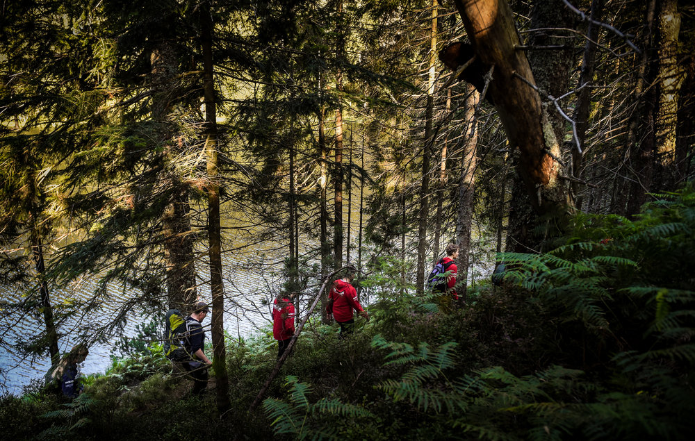Im Bannwald Wilder See.