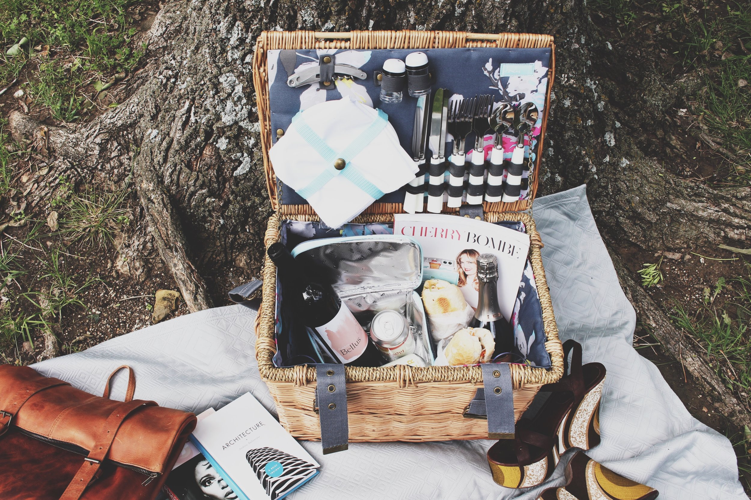 Image result for day out with mom picnic