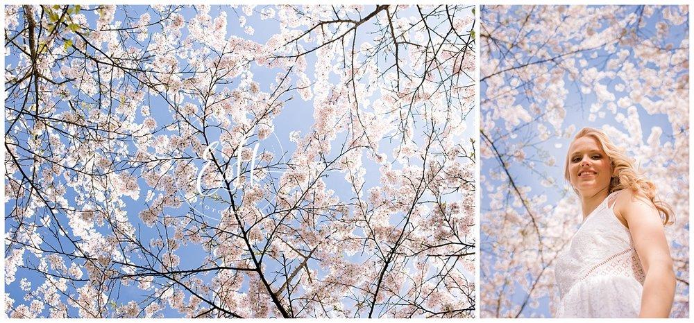 trouwfotograaf_amsterdam_japansebloesempark_evelienhogersfotografie (5).jpg