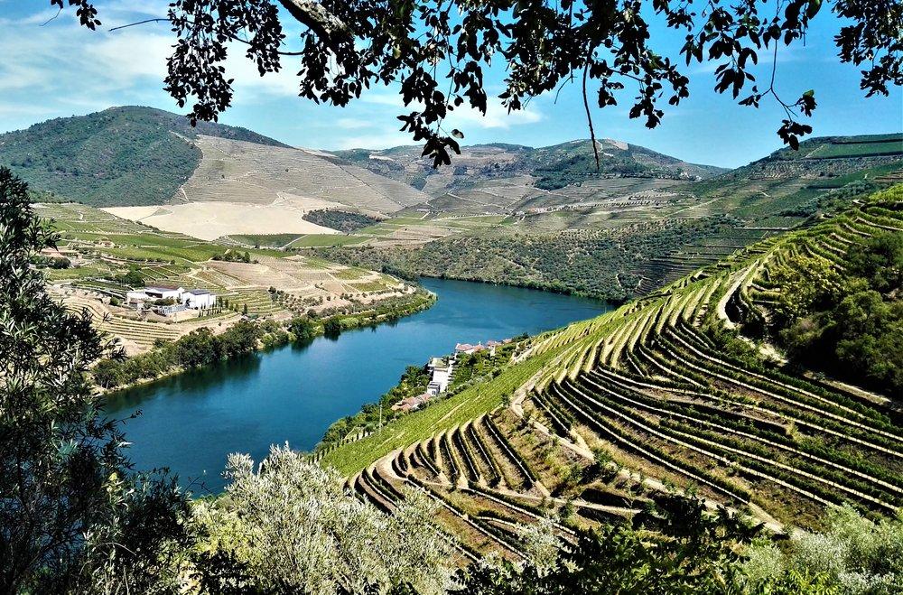 A Bago D'Uva 360º Portugal Tours irá mostrar-lhe a Região do Douro em Portugal, o famoso Rio Douro e de onde vem o Vinho do Porto, assim como o vinho DOC Douro.