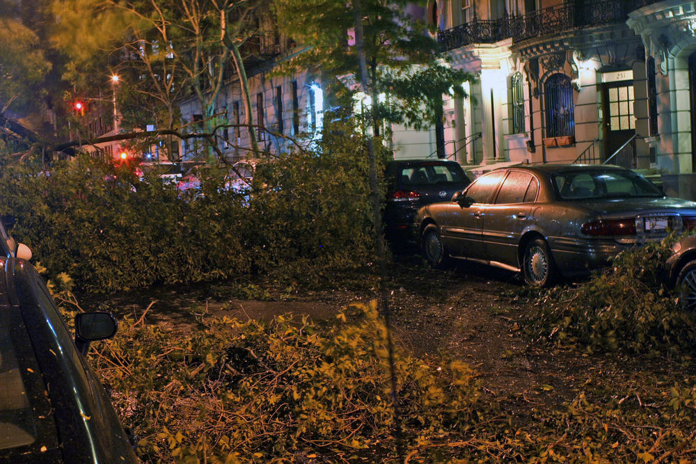 Damage due to Hurricane Sandy on NY's upper west side (101 street, between West End and Broadway) © Mr.choppers