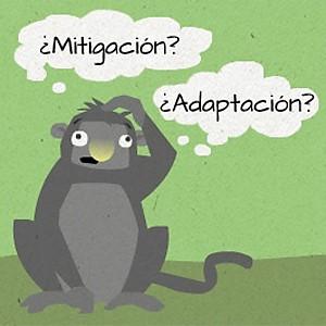 WWF Adapt