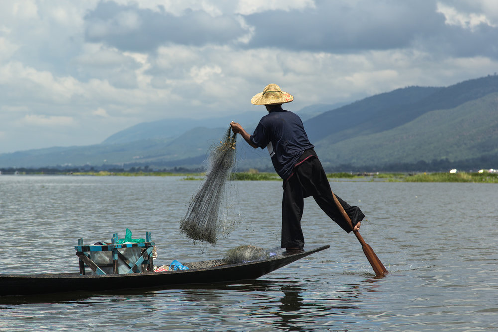 A Burmese fisherman paddles with his foot while setting a new net at Inle Lake, where local villages on stilts have perfectly adapted livelihoods to living and relying on the numerous benefits provided by the surrounding ecosystem, from fish to weaving materials and ever-increasing tourism dollars. These livelihoods are increasingly vulnerable to climate change, as higher temperatures increase droughts and lower water levels to new lows. Photo Credit: © Ryan Bartlett