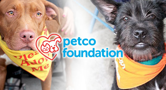 #PETCOFOUNDATION