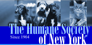 Humane Society of New York