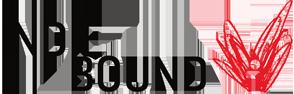 IndieBound-buy