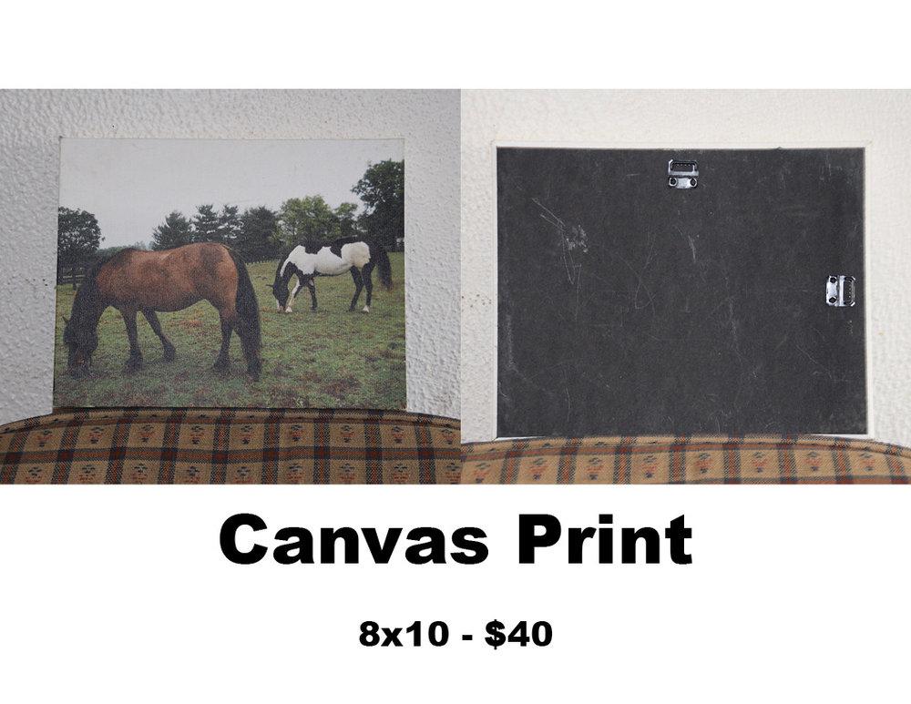 framed print 7.jpg