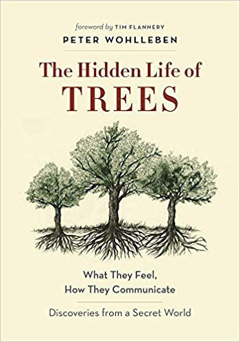 BOOK-THE HIDDEN LIFE OF TREES