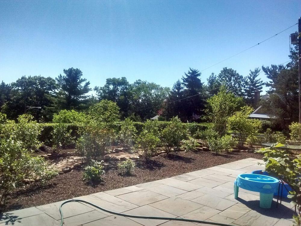 Installation of Back Garden with Children's Path