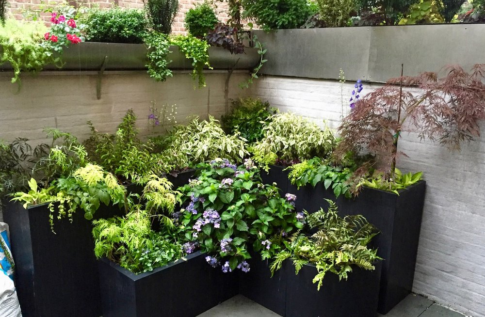 Container - Including window boxes and other containers in hundreds of different sizes and fabrications.Learn more about container gardensView container garden gallery